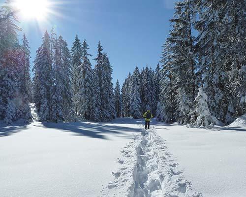 Schneeschuhwandern Winter Montafon